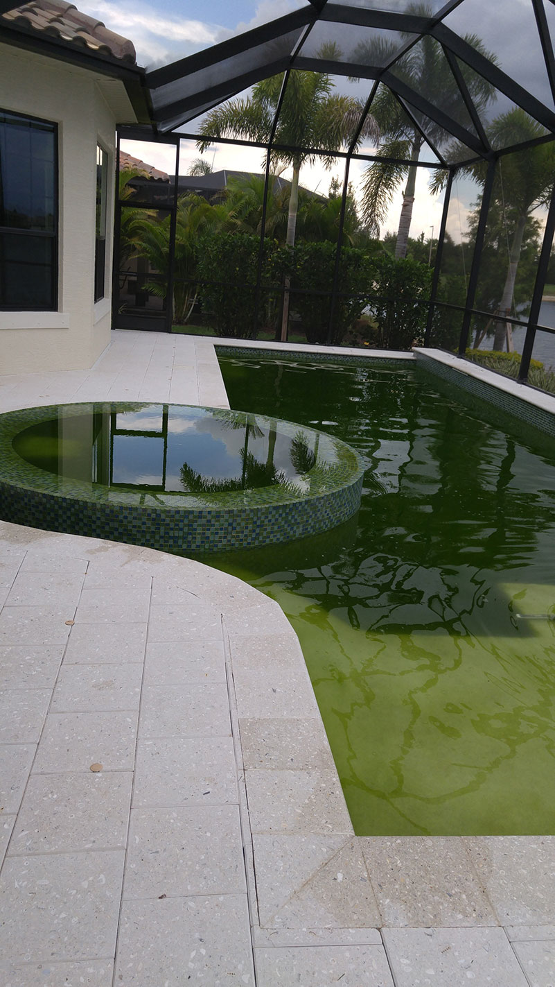 A before image of a pool that we had to clean